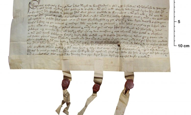 Medieval Lawyers Wrote on Sheepskin Parchment Because It Helped Prevent Fraud