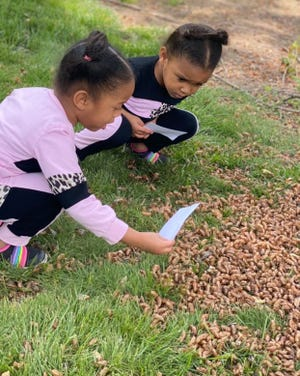 Four-year-old twin girls, Meena and Nyla Claytor-Howard, find a group of cicadas while at their grandmother's home in Burke, Virginia.