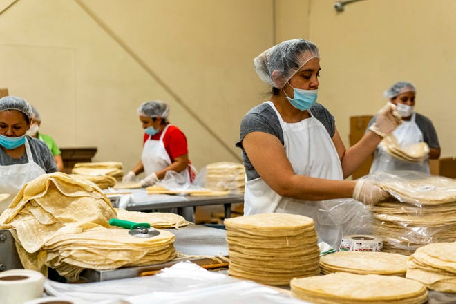 A woman packs tortilla with other employees at La Sonorense Tortilla Factory in Phoenix, Ariz.