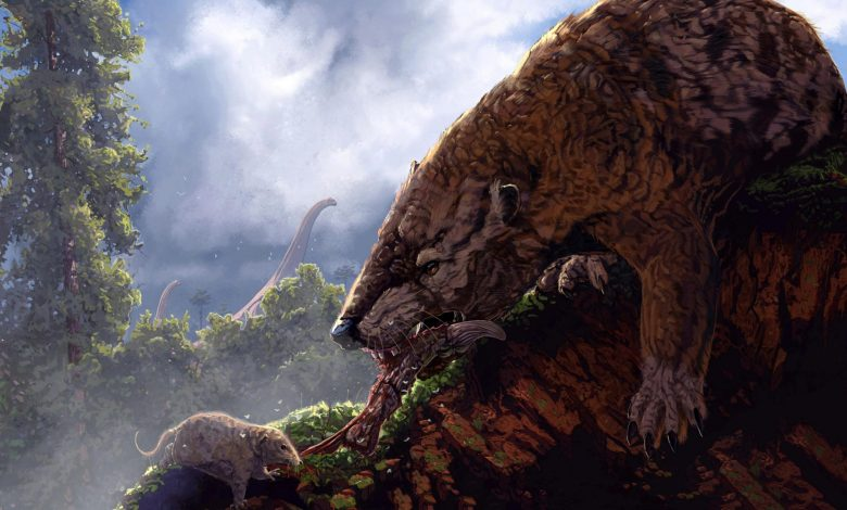 Extraordinary Evolution Research Reveals Mammals in the Time of Dinosaurs Held Each Other Back