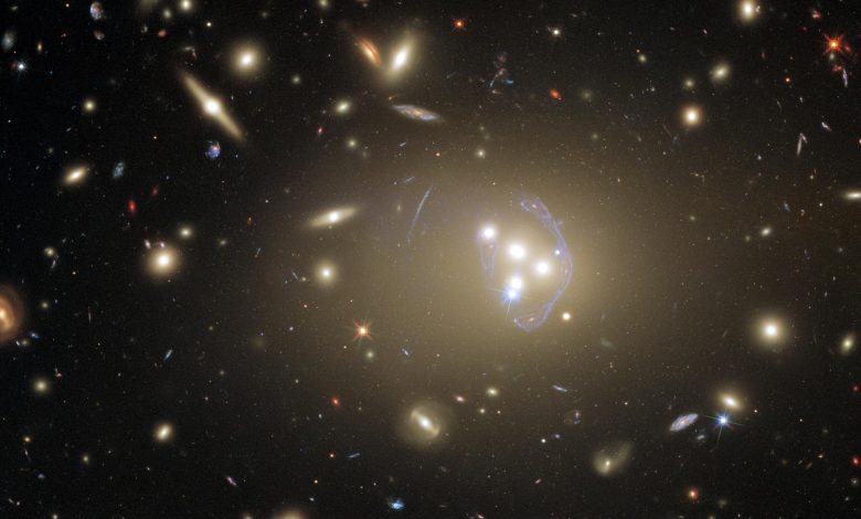 Hubble Spots Massive Galaxy Cluster With a Wealth of Exciting Possibilities