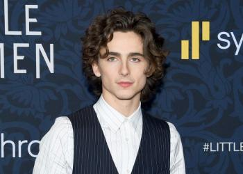 Willy Wonka will be played by Timothée Chalamet in a musical based on Roald Dahl's eccentric chocolatier's early life.