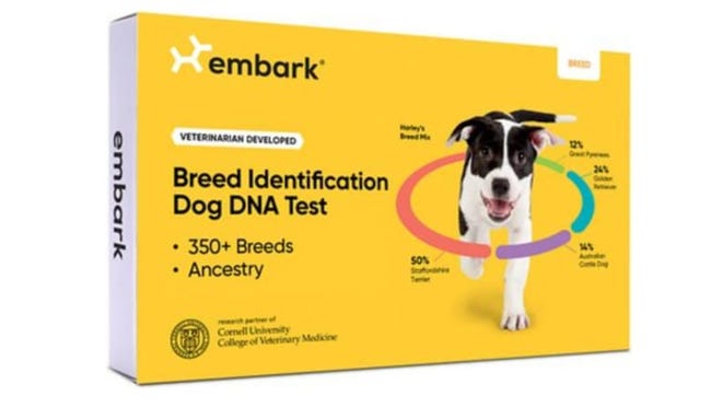 Find out if Fido's illustrious (or humble) lineage with this canine genealogy test.