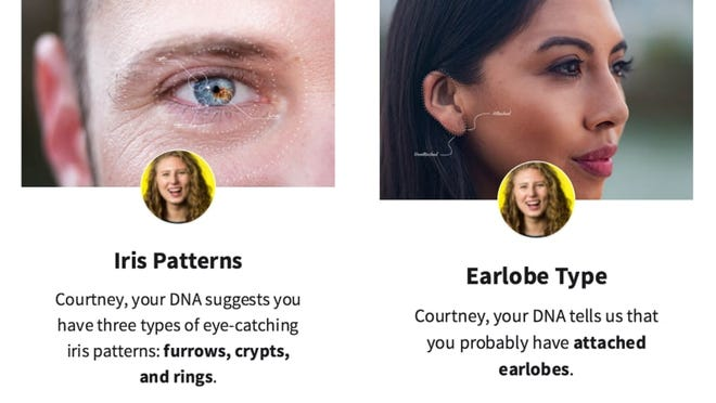 AncestryDNA Traits can show you insights about your genetic traits.
