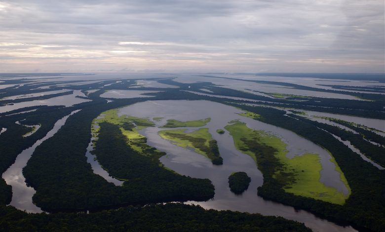 Amazonian Brexit boost could spell climate disaster