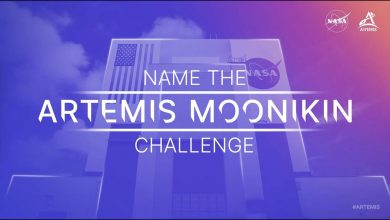 """Help Name the """"Moonikin"""" Flying on Artemis I Mission Around the Moon"""