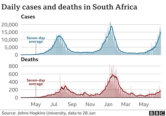 A chart showing the number of coronavirus deaths and cases in South Africa over 12 months