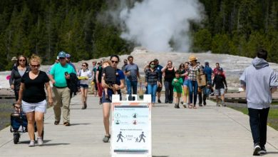 In this Monday, June 1, 2020 photo, visitors walk away from Old Faithful as a sign about COVID-19 safety sits in the sidewalk in Yellowstone National Park in Wyoming.