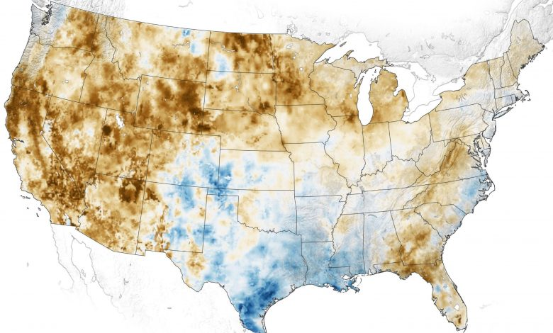 Long-Term Drought Grips the Western U.S. – Soils and Plants Are Parched