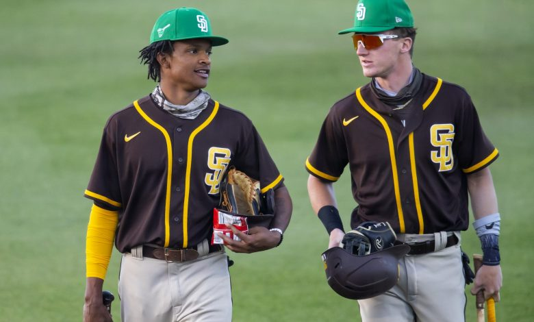 Need For Speed: Minor-League Stolen Bases