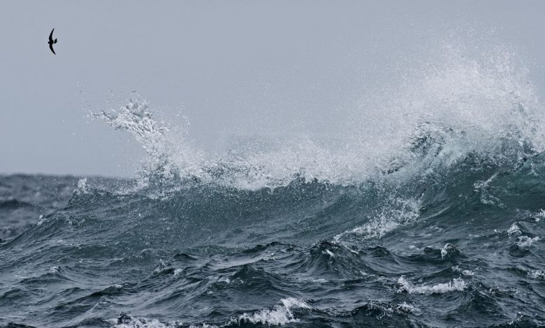 The world has gained a brand new ocean