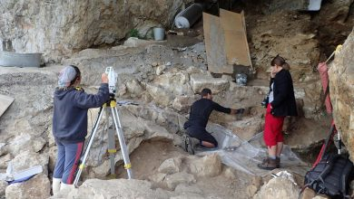 Unearthing Neanderthal Population History Using Ancient Nuclear DNA From Cave Sediments