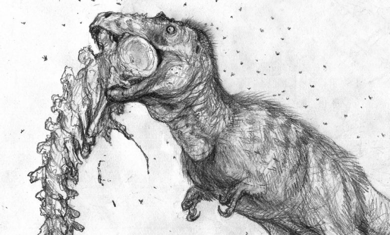 Young T. rexes' bite was more powerful than an adult lion, tiger or bear