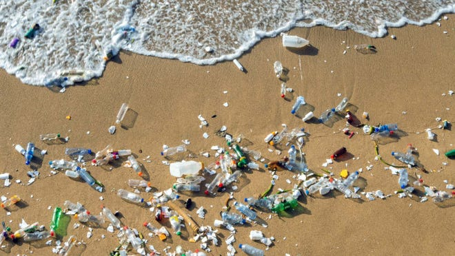 According to the Plastic Free July website, this eco-friendly movement spans across 177 countries–how impressive!