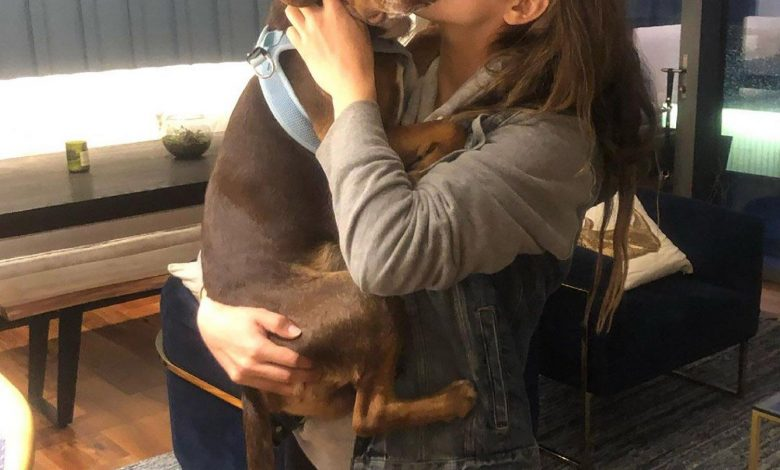 Aly Raisman Praises 2 Rescuers Who Saved Missing Dog Mylo: 'Such Good People'