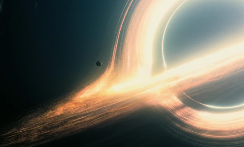 How the Universe Is Reflected Near Black Holes