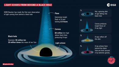 Light Echo From Behind a Black Hole Confirms Einstein's Theory of General Relativity