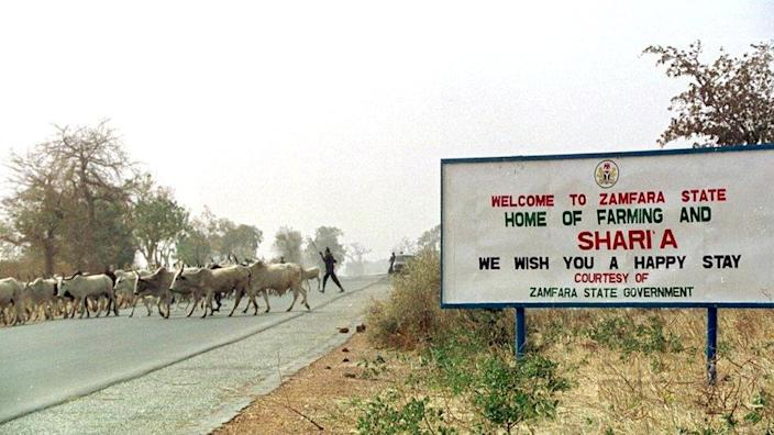 Cattle crossing the road by a sign welcoming people to Zamfara state