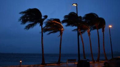 Five named storms have formed this year, including Hurricane Elsa, which spun up along the west coast of Florida in early July.