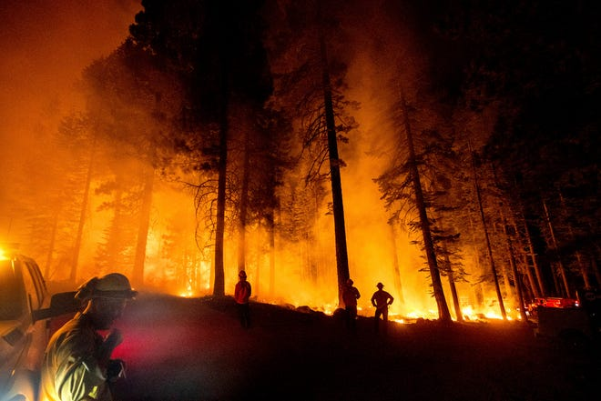 Firefighters monitor a firing operation, where crews set ground fire to stop a wildfire from spreading, while battling the Dixie Fire in Lassen National Forest, Calif., on Monday, July 26, 2021.