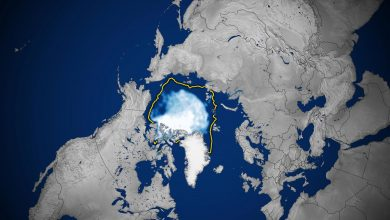 Arctic Sea Ice Extent 26% Greater Than Last Year – But Still 12th-Lowest on Record