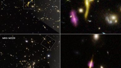 """""""Dead"""" Galaxies Mysteriously Ran Out of Fuel To Make Stars in the Early Universe"""