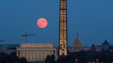 Don't Miss the Harvest/GRAIL Moon + Other Notable Celestial Events