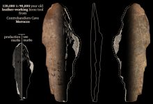 Bone Tool From Contrebandiers Cave, Morocco