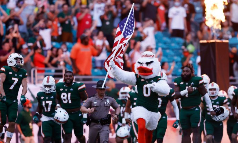 Eight lives left - Falling cat saved at Miami Hurricanes football game