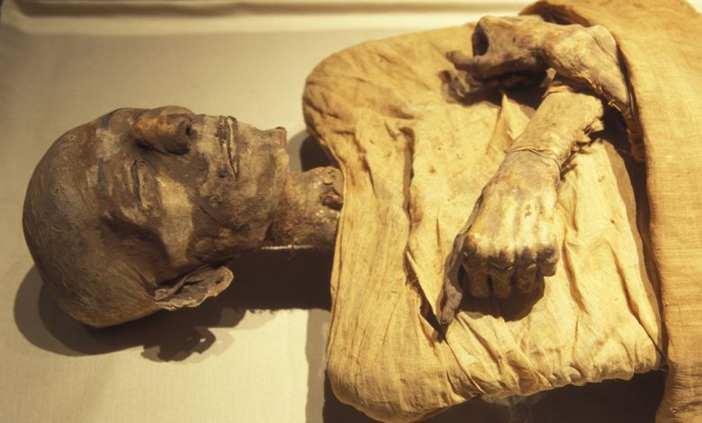 If mummies had faces: Scientists use DNA to see how ancient Egyptians looked