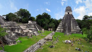 Maya Rulers Transformed Cities, Put Their Personal Stamp on Monumental Complexes