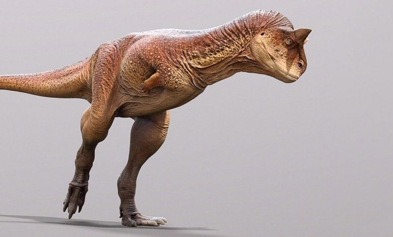 Paleontologists Reconstruct One of the Strangest Carnivorous Dinosaurs Ever Discovered