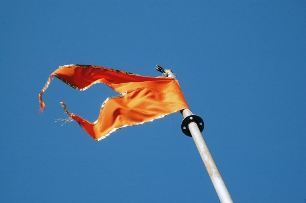 RSS functionary in Jharkhand the organisation will comment