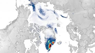 """Unusual Snowfall in Greenland – """"A Dramatic End to a Season of Extreme Events"""""""
