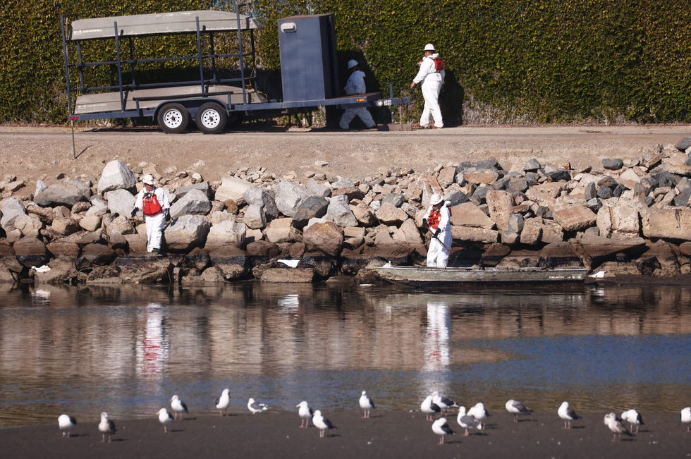 Cleanup workers attempt to contain oil which seeped into Talbert Marsh, home to around 90 bird species, after a 126,000-gallon oil spill from an offshore oil platform on October 3, 2021 in Huntington Beach, California.