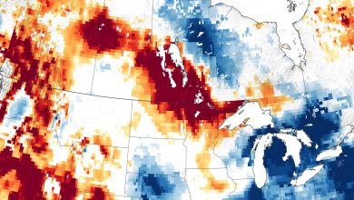 """""""Extreme"""" Drought Affecting Agricultural Lands in the Northern Great Plains"""