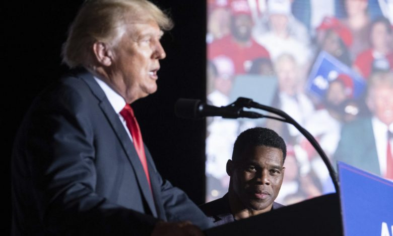Trump-backed candidates face scrutiny after minimal vetting